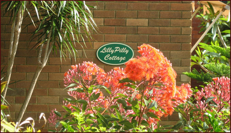 Lillypilly - Accommodation Fremantle
