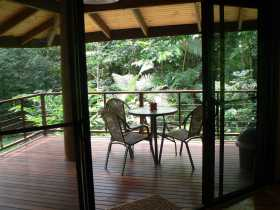 Cape Trib Exotic Fruit Farm Bed and Breakfast - Accommodation Fremantle