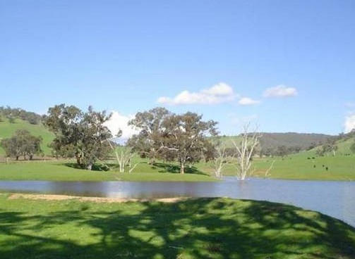 Hillview Farmstay - Accommodation Fremantle
