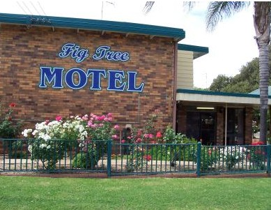 Fig Tree Motel - Accommodation Fremantle