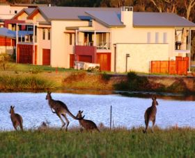 Grand Mercure The Vintage Hunter Valley - Accommodation Fremantle