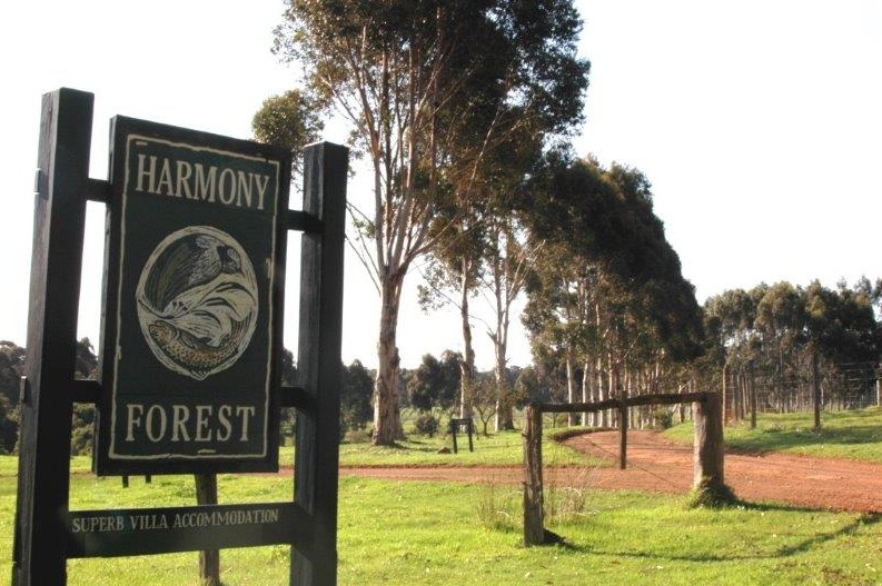 Harmony Forest - Accommodation Fremantle