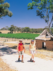 Brinkworth Country Lodge Bampb - Accommodation Fremantle