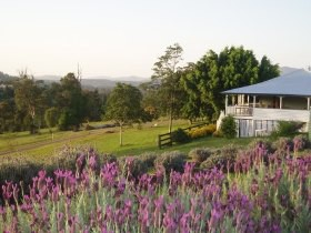 Blue Ridge Lavender Farm And Retreat - Accommodation Fremantle
