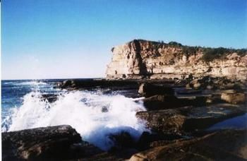 Terrigal Lagoon Bed and Breakfast - Accommodation Fremantle