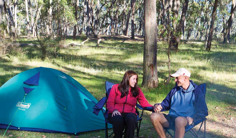 Apsley Falls campground - Accommodation Fremantle
