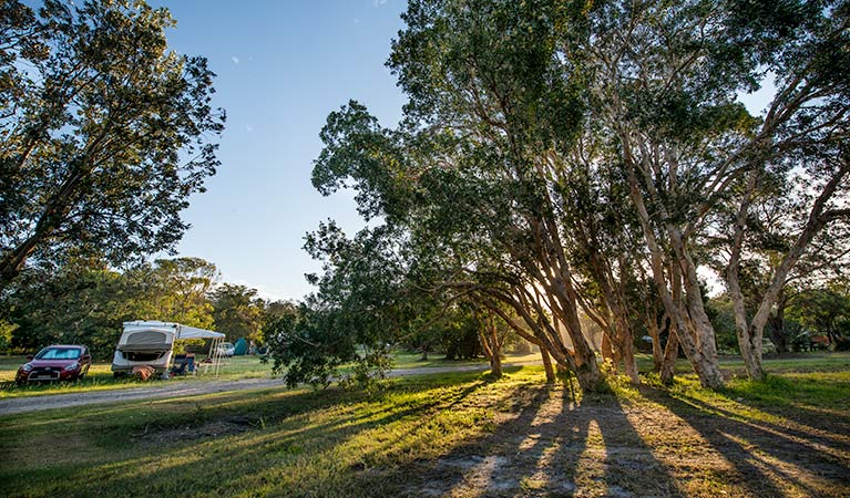 Delicate campground - Accommodation Fremantle