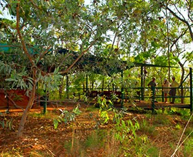 Arnhemland Barramundi Nature Lodge