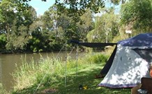 Williams River Holiday Park - Accommodation Fremantle