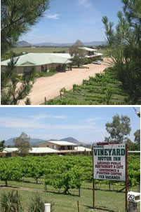 Mudgee Vineyard Motor Inn - Accommodation Fremantle