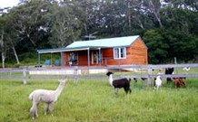 Moorallie Cottage Farm Stay - Accommodation Fremantle