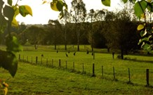 Stone Cottage Mittagong - Accommodation Fremantle