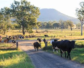 Tommerups Dairy Farmstay - Accommodation Fremantle