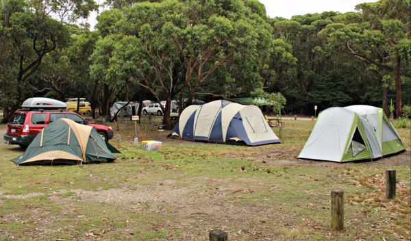 Pretty Beach Campground Murramarang National Park - Accommodation Fremantle