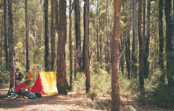 Nanga Mill Camp at Lane Poole Reserve