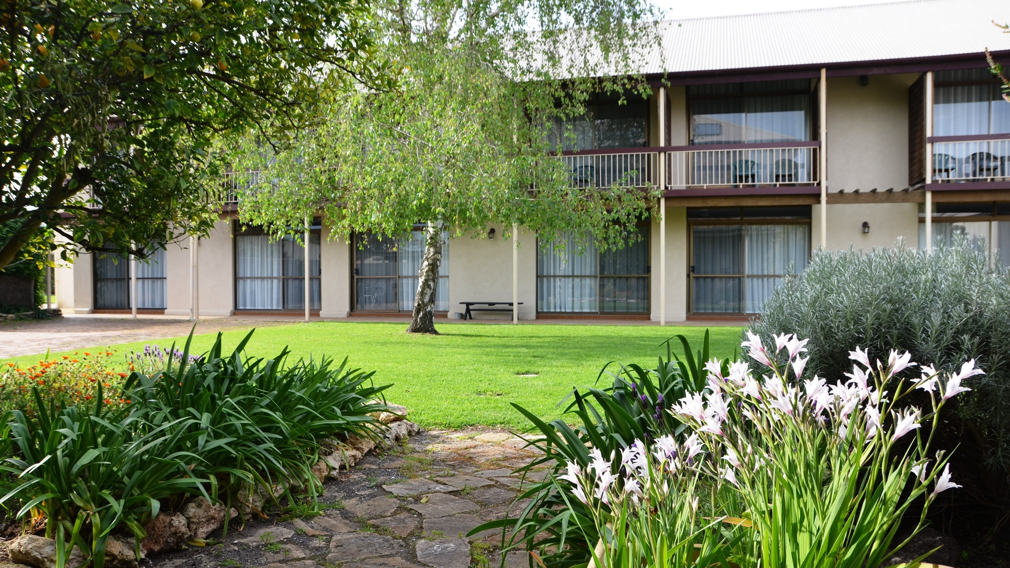 Coonawarra Motor Lodge