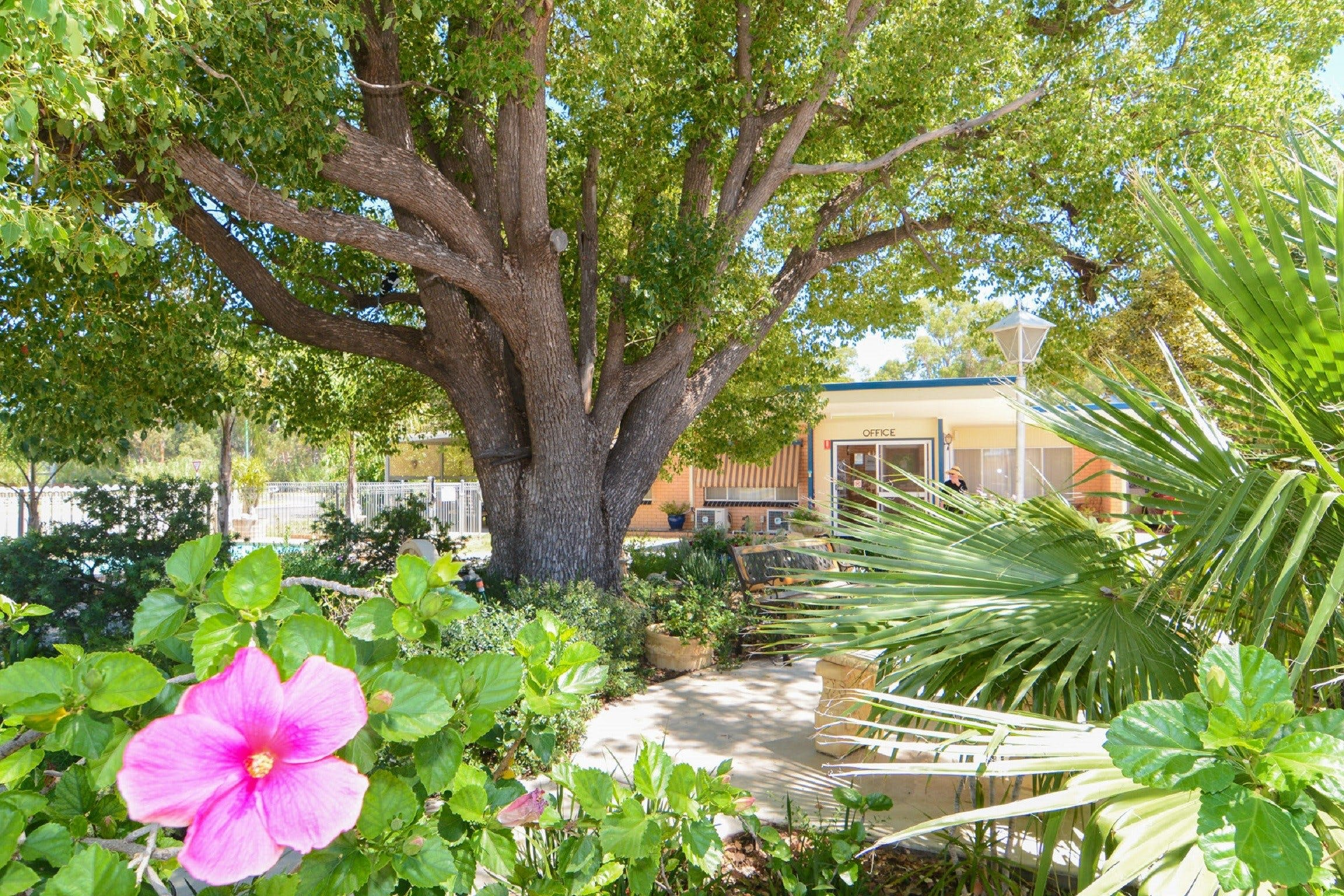 Balranald Sturt Motel - Accommodation Fremantle
