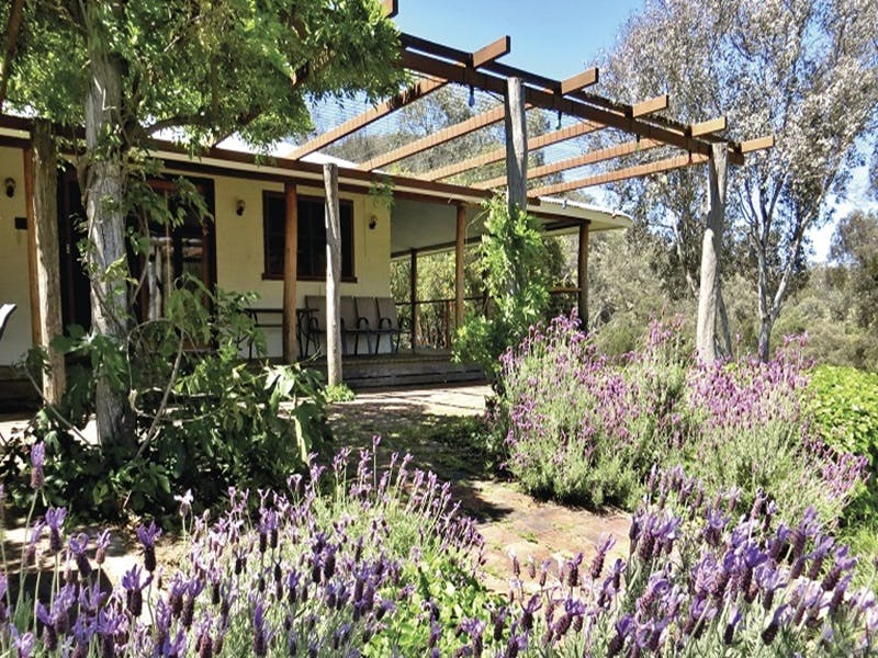 Capertee Homestead - 'Port Macquarie' - Accommodation Fremantle