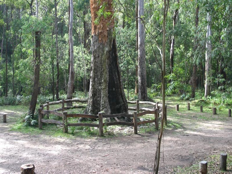 Six Mile Creek campground - Accommodation Fremantle