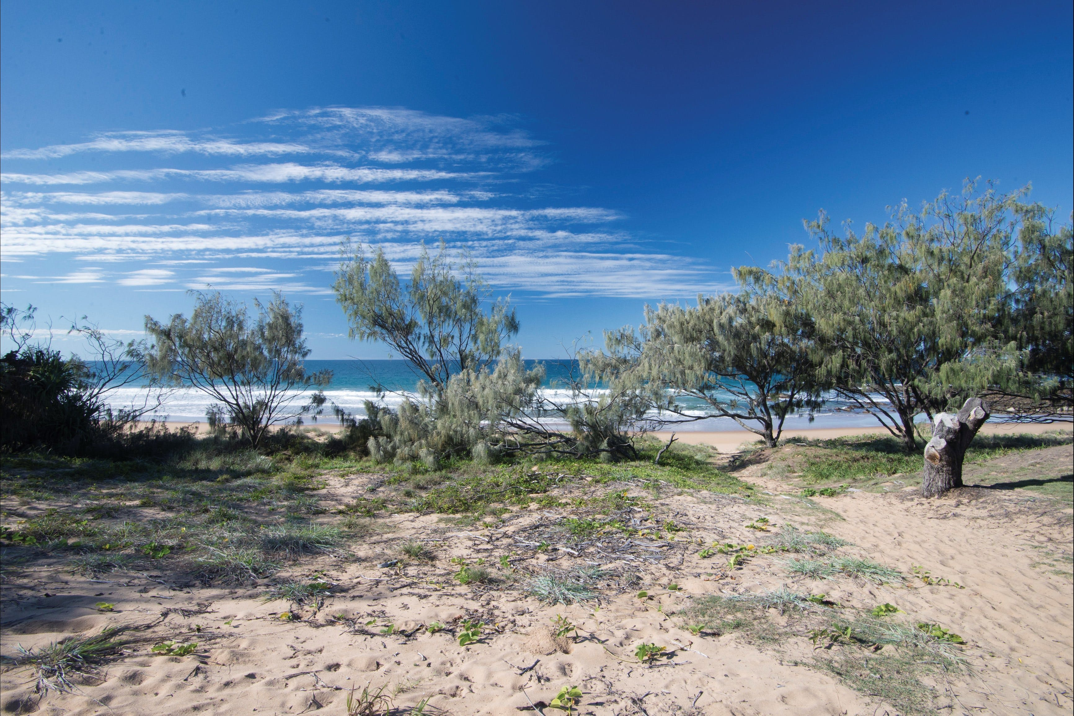 Deepwater National Park camping - Accommodation Fremantle