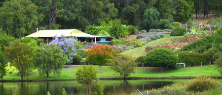 Pemberton Lavender and Berry Farm Cafe and Cottages - Accommodation Fremantle