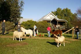Sunnyhurst Chalets - Accommodation Fremantle