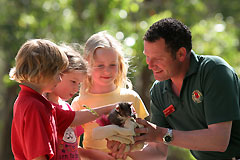 Cleland Wildlife Park - Accommodation Fremantle