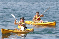 Manly Kayaks - Accommodation Fremantle