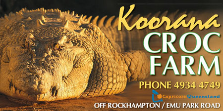 Koorana Saltwater Crocodile Farm - Accommodation Fremantle