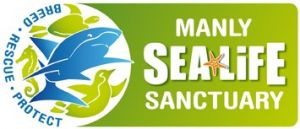 Manly SEA LIFE Sanctuary - Accommodation Fremantle
