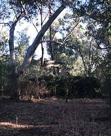 Ghost House Walk Trail Yanchep National Park - Accommodation Fremantle