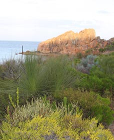 Meelup Trail - Accommodation Fremantle
