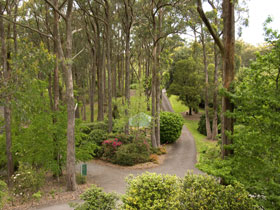 Mount Lofty Botanic Garden - Accommodation Fremantle