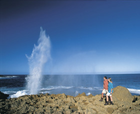 The Blowholes Carnarvon - Accommodation Fremantle