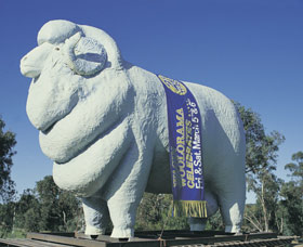Giant Ram Tourist Park - Accommodation Fremantle
