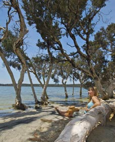 Stokes National Park - Accommodation Fremantle