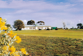 Lucindale Country Club - Accommodation Fremantle