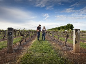 Coonawarra Wineries Walking Trail - Accommodation Fremantle