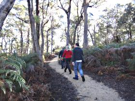 Bridport Walking Track - Accommodation Fremantle