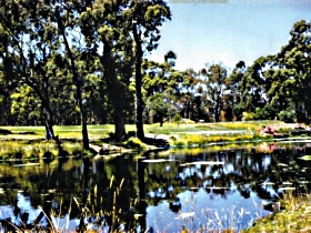 Smithton Country Club - Accommodation Fremantle