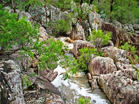 Crows Nest National Park - Accommodation Fremantle