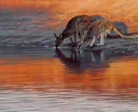 Steve Morvell Wildlife Art - Accommodation Fremantle