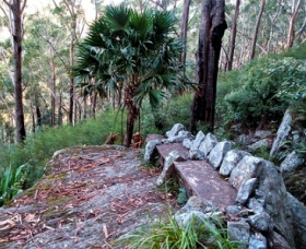 Wodi Wodi Walking Track - Accommodation Fremantle