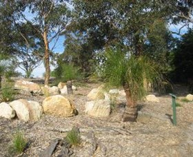 Curtis Park Arboretum - Accommodation Fremantle
