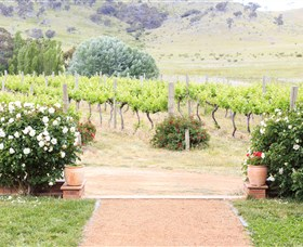 Brindabella Hills Winery - Accommodation Fremantle