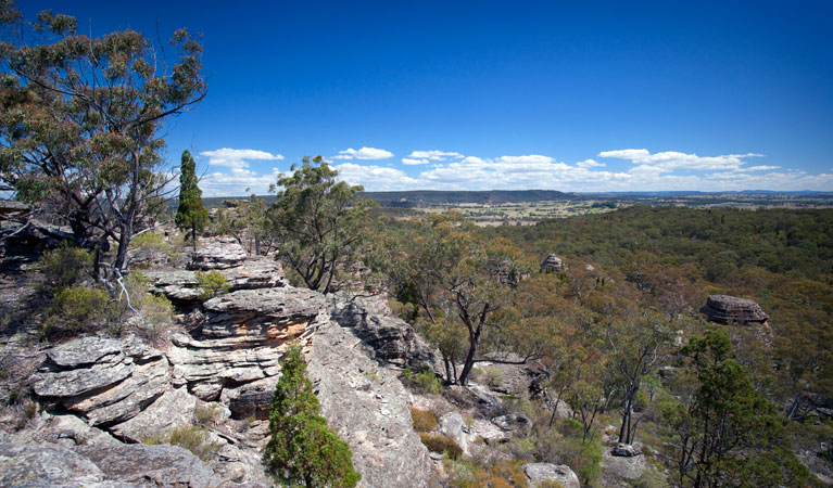 Munghorn Gap Nature Reserve - Accommodation Fremantle