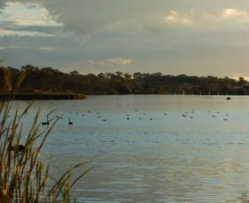 Lake Inverell Reserve