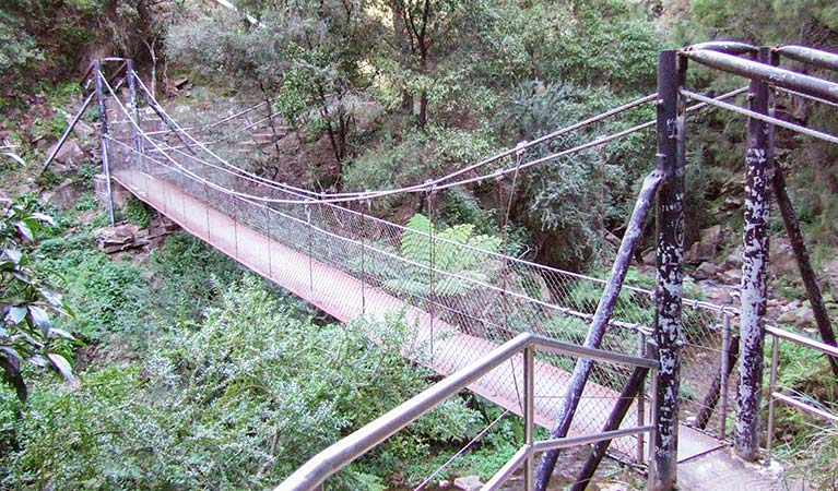 Jenolan River walking track - Accommodation Fremantle