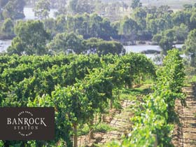 Banrock Station Wine And Wetland Centre - Accommodation Fremantle