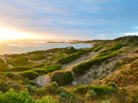 Beachport Conservation Park - Accommodation Fremantle